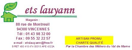 logo lauyann